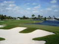 2008 4.6 WGC Doral first look at blue monster no 18
