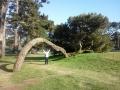 _Merri 4 Tree 6-14-12