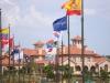 flags-ch-closeup