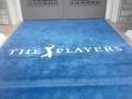 _blue carpet Players