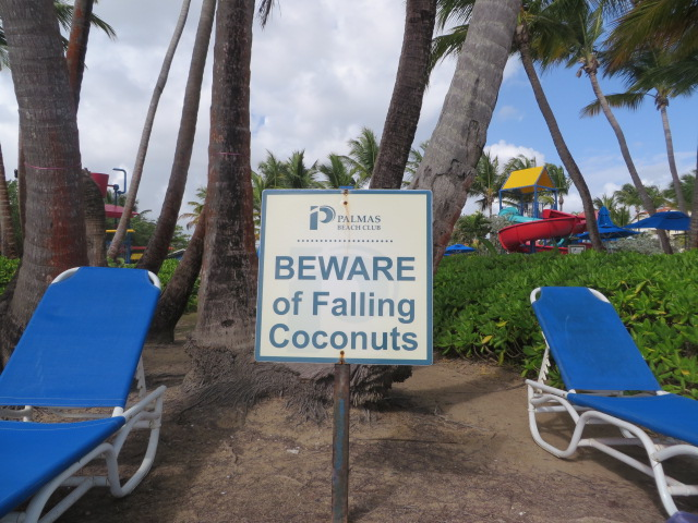 beach-beware