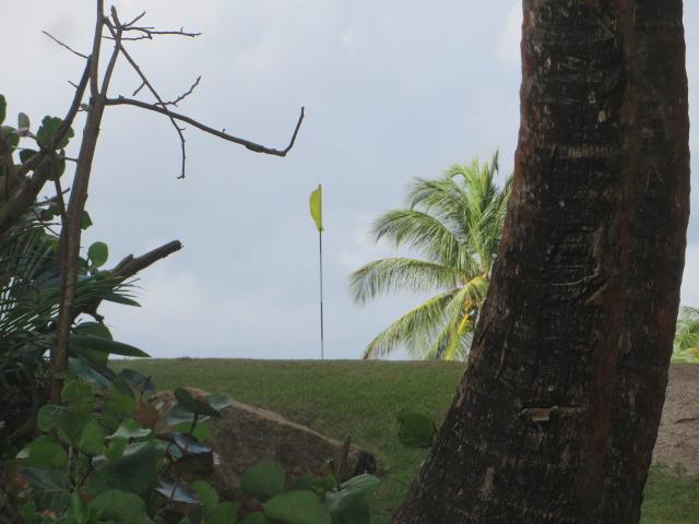 beach-golf