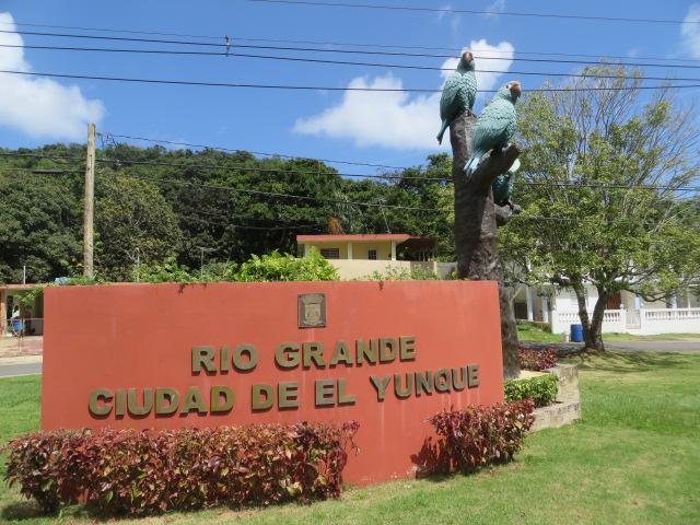 rio-grande-city-of-el-yunque