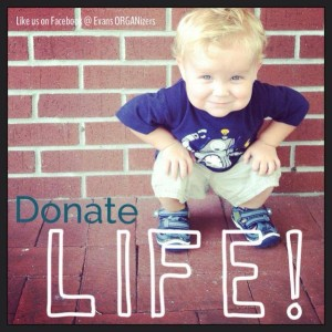 Little Evan received a kidney transplant from his mother Melissa.