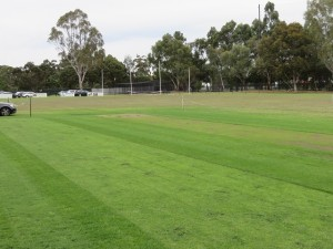 Cricket pitch and Australian football goal posts.