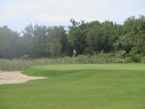 The short par-4 5th green. Like many short par-4s length is the bait and the green complex the hook. I was hooked!