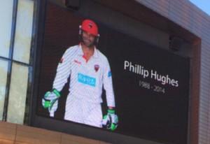 _Phillip Hughes