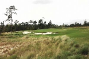 Signature 16th hole at The Preserve, a Jerry Pate design.