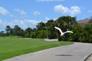 The white egret that joined us all the way from the 2nd tee to the 12th green!