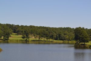 Beautiful lake! Beautiful vistas! Has the East Lake flair about it in terms of beauty, history, & golfing traditions!